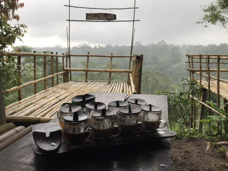 Kopi Luwak plantation Ubud Bali