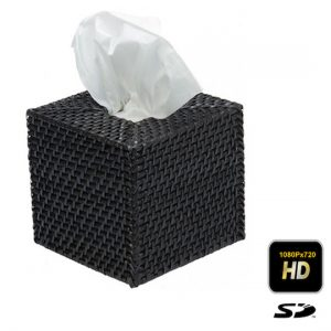 Tissue Box Camera Hidden