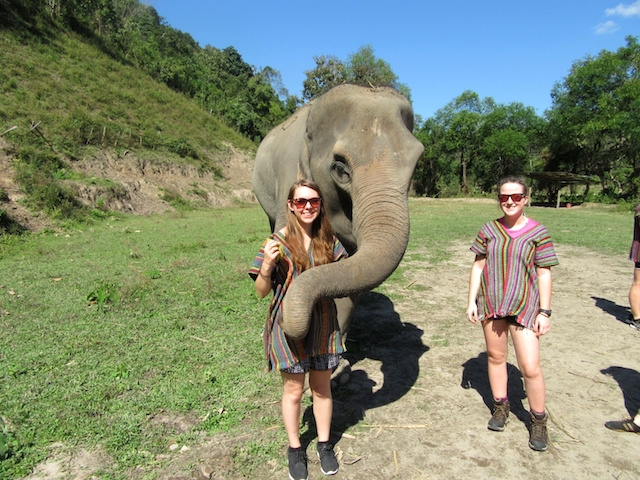 my ethical elephant sanctuary experience in thailand