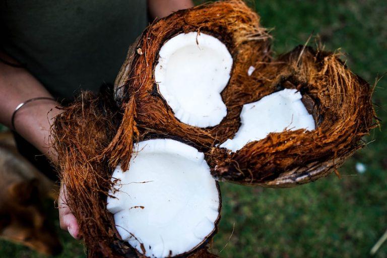 Coconut oil for zero-waste travel