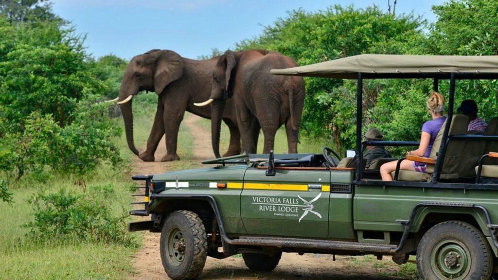 American woman kidnapped in Uganda on safari