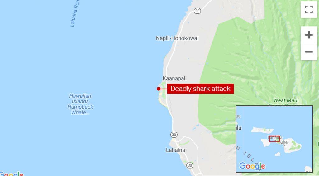 Maui Shark Attack