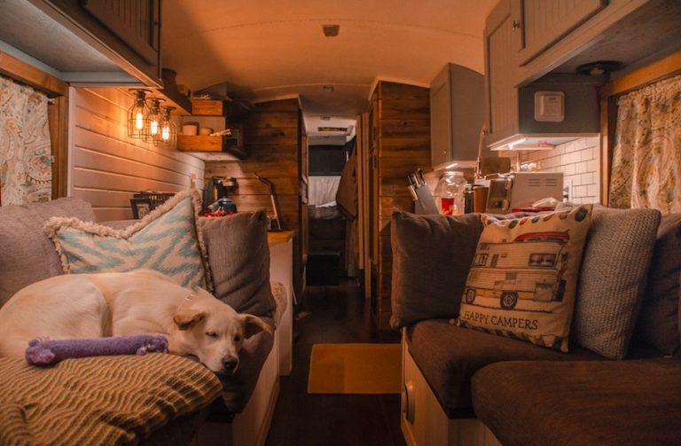 Comfy skoolie reno and decor