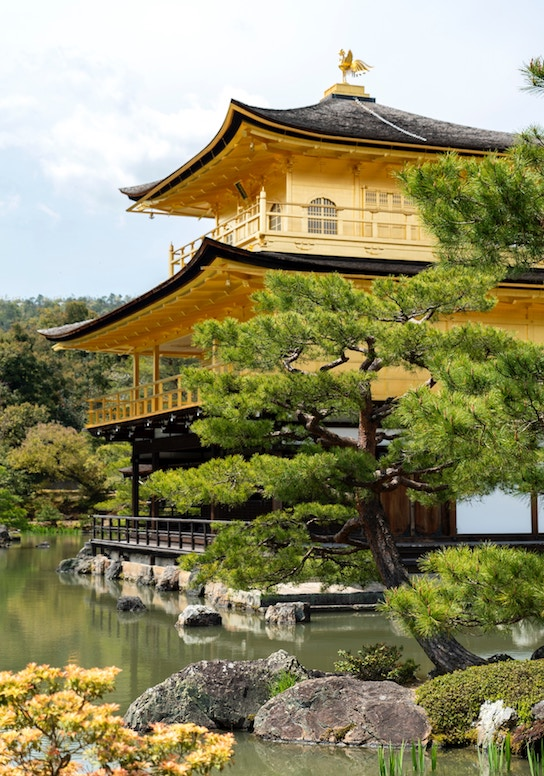 Tips for Japan travel - everything you need to know