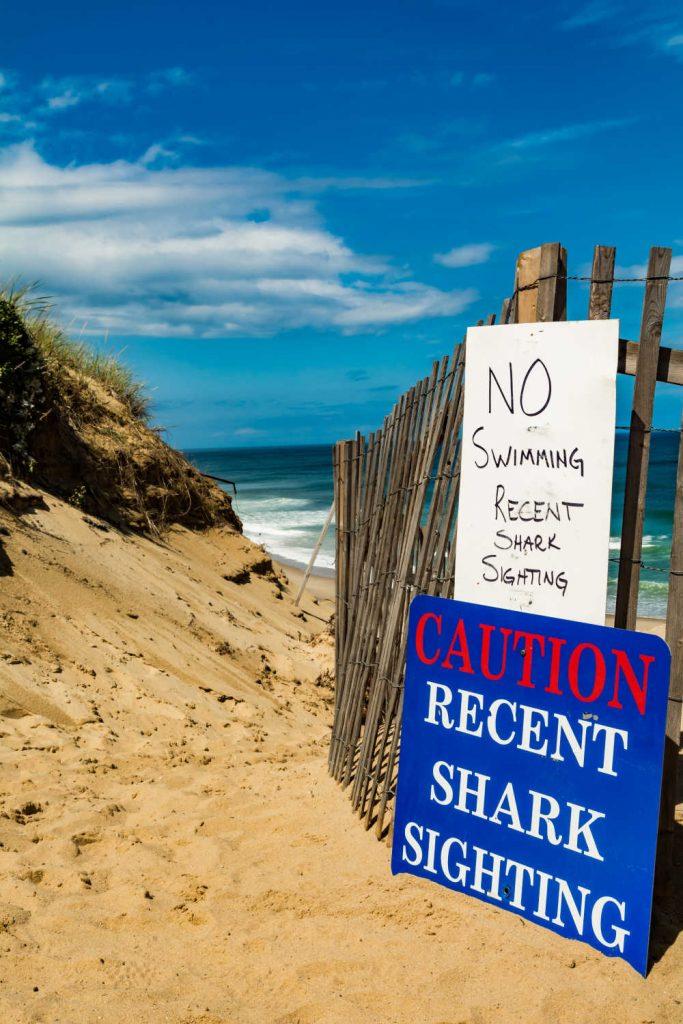 Do Not Swim Sharks