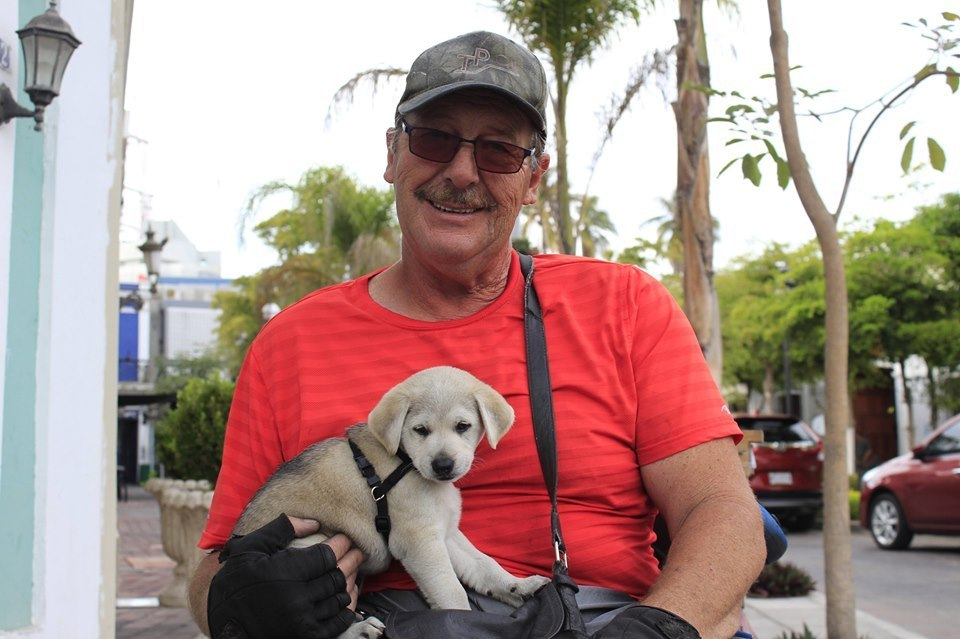 Wheelchair-Warren-and-his-dog-luna
