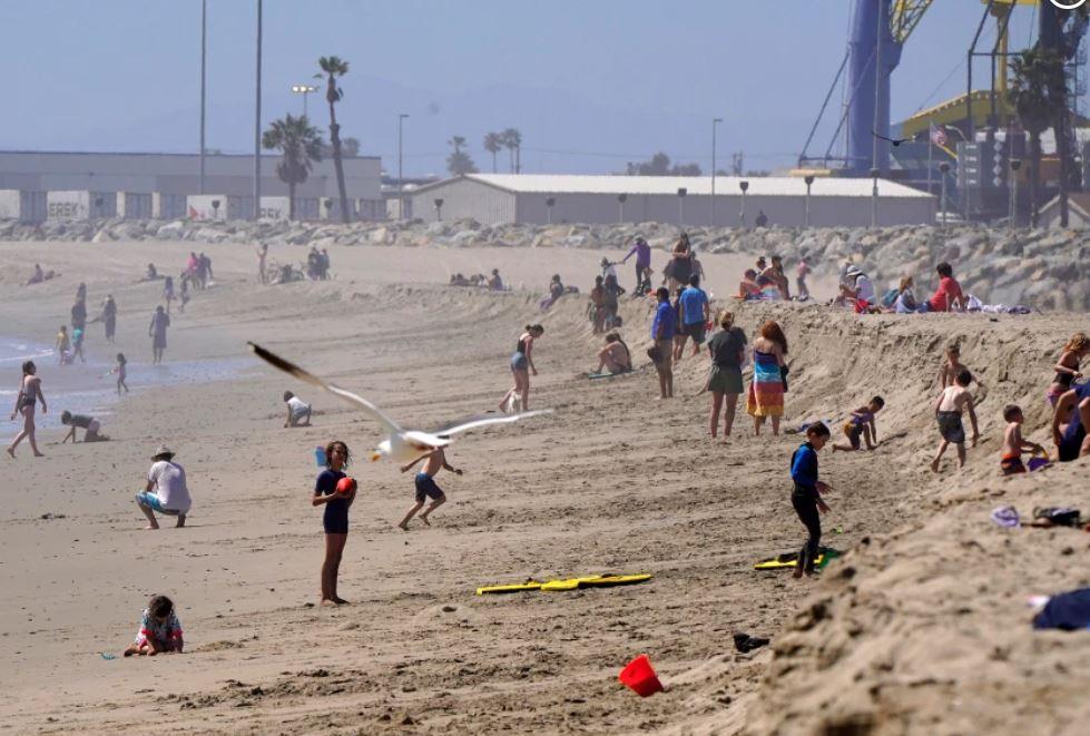 crowds beach