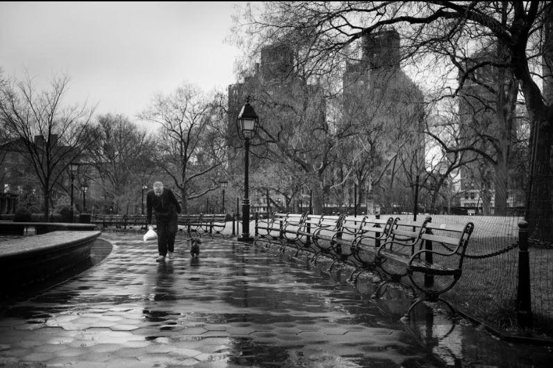 man alone madison square park