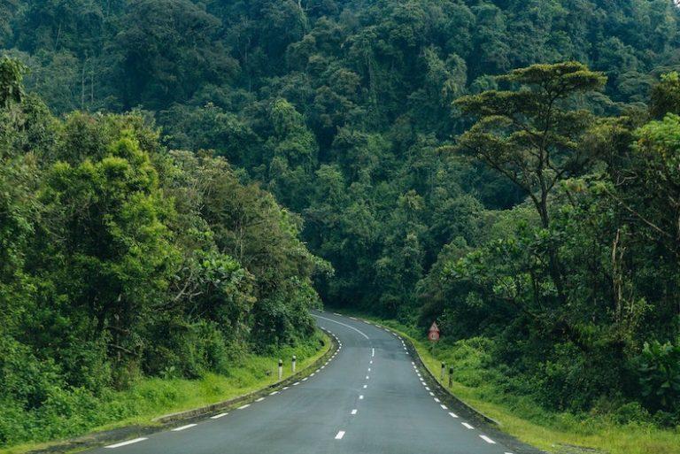 rwanda reopening for international tourism