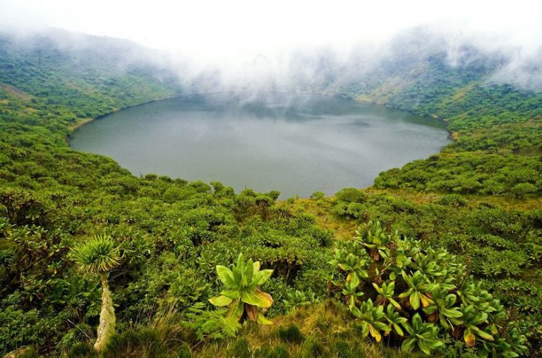 visit rwanda now open for tourists