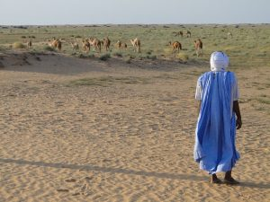 when does Mauritania reopen