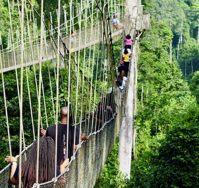 Kakum National Park Ghana - reopen for tourism