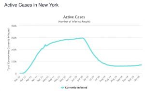 new york case numbers