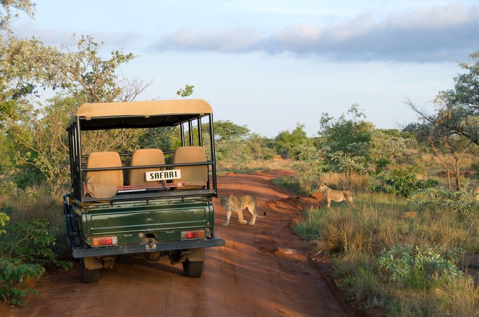 South Africa Reopening Borders For Tourism October 1