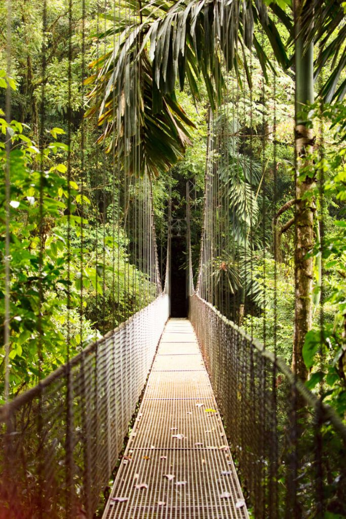 Hanging Bridge, Mistico Arenal Hanging Bridges Park, Costa Rica.