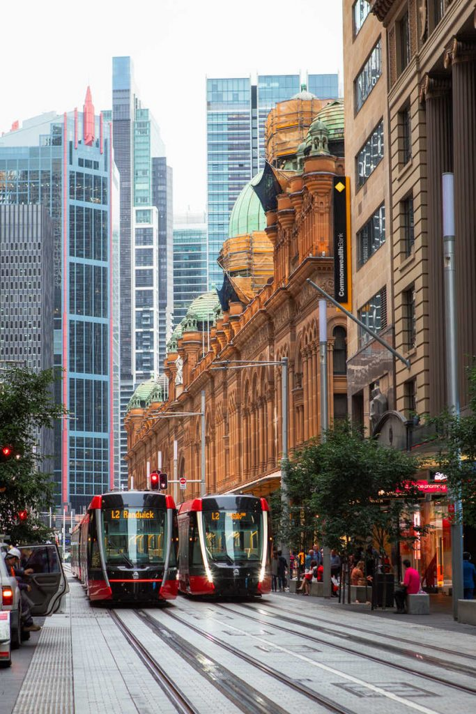 Two trams passing through in front of QVB at George St.
