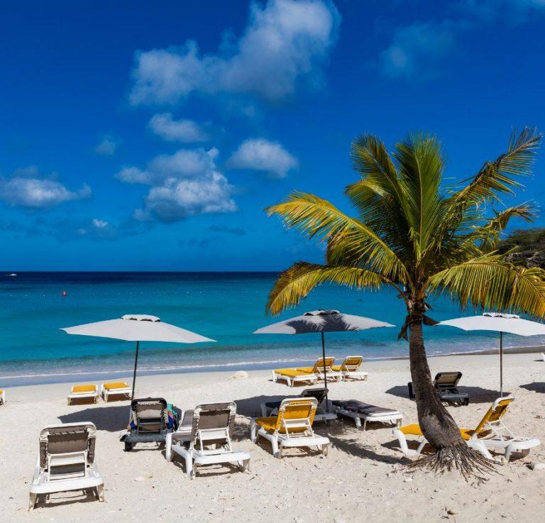 tropical Curacao
