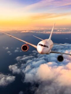 Early Trends Suggest 2021 Flights Will Be Cheaper Following Surge In Bookings