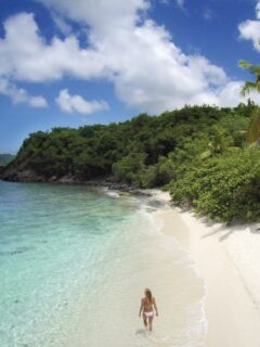 U.S. Virgin Islands Clarifies Entry Requirements For American Travelers