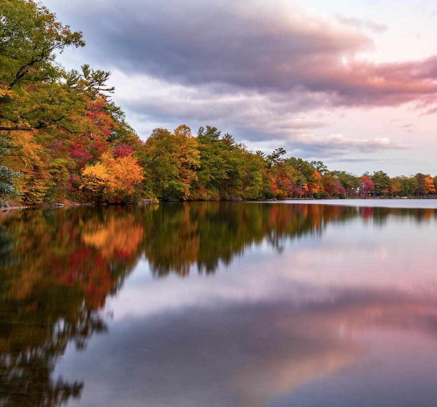 Lake Trees Fall