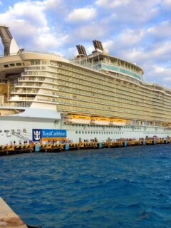 CDC Releases New Guidelines for Cruise Operations in the U.S.