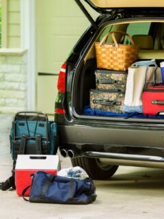 Top 10 Cooler Packing Tips For Your Spring Road Trip