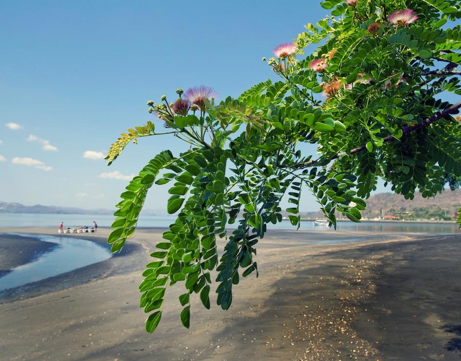 beaches open in Costa Rica 2021