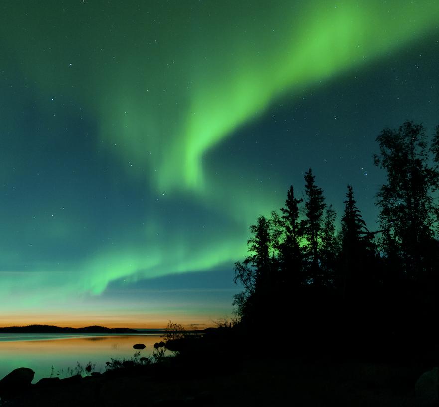 northern lights trees