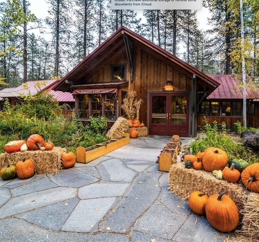 sleeping lady mountain resort leavenworth washington pumpkins in front of cabin