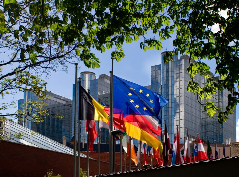 EU parliament flags