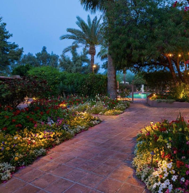 hermosa inn flowers pool sidewalk arizona