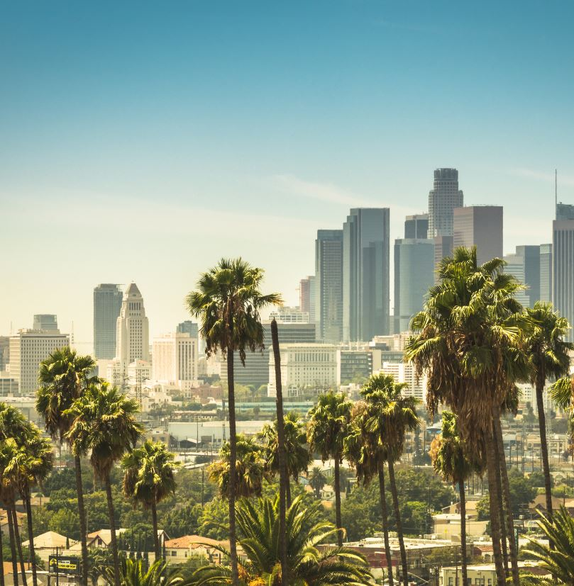 skyline on a sunny day of downtown Los Angeles, palm trees in the foreground