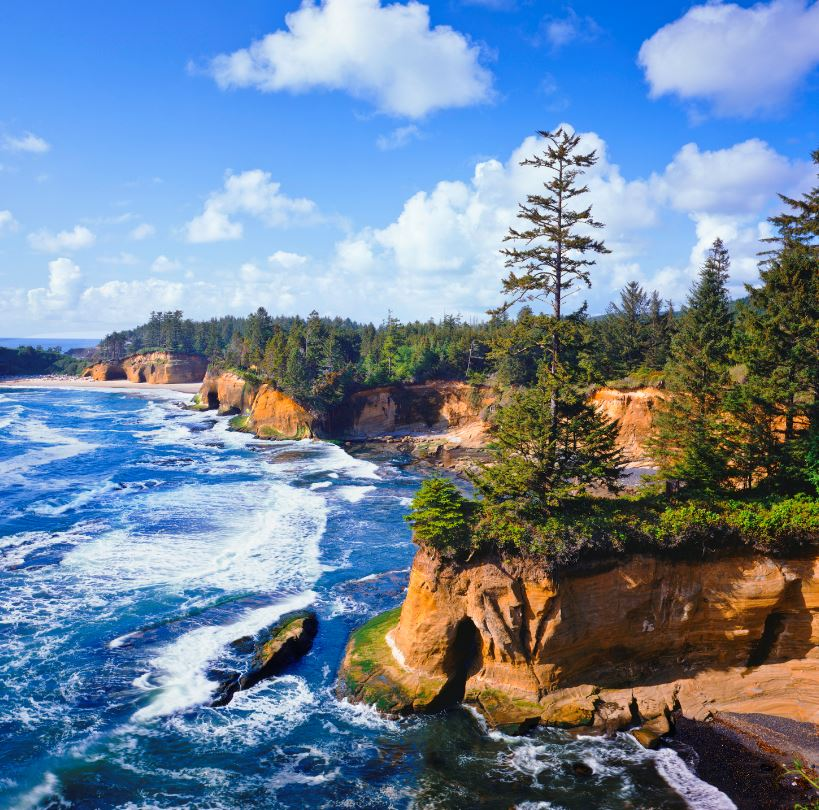 Traverse the Oregon and Washington Coasts