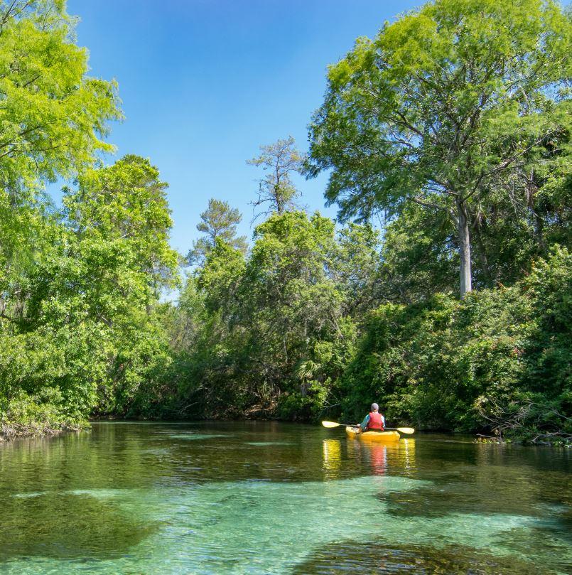 Weeki Wachee Springs (Weeki Wachee, Florida)