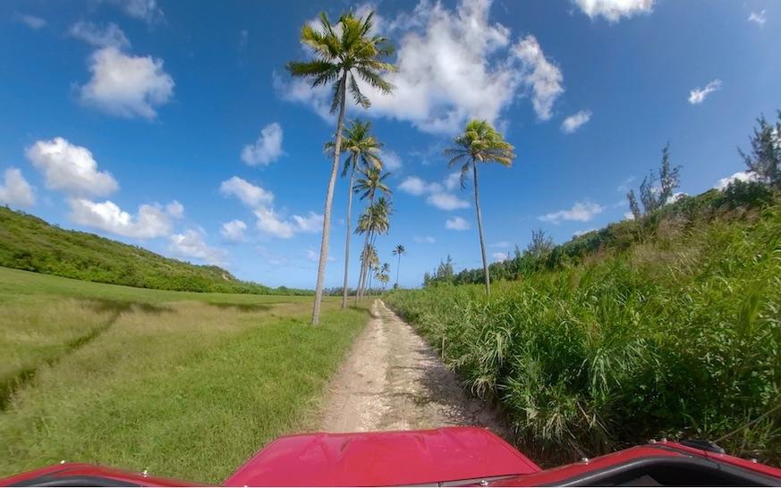 barbados adventure tourism