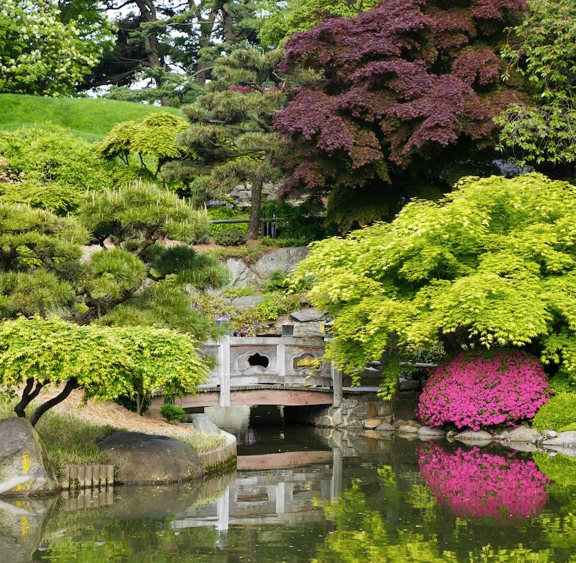 japanese garden botanical water bridge