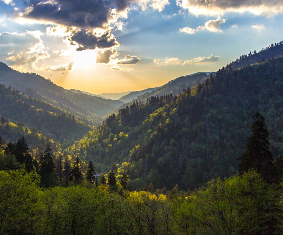 Appalachian Trail mountains and trees