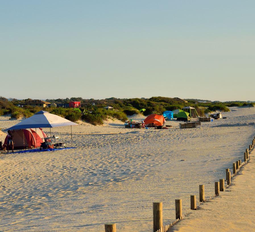 assateague island maryland beach