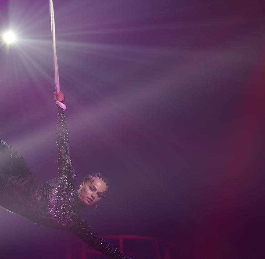 Catch A Cirque Du Soleil Show