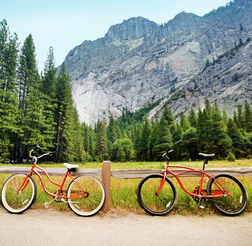 Via Bicycle