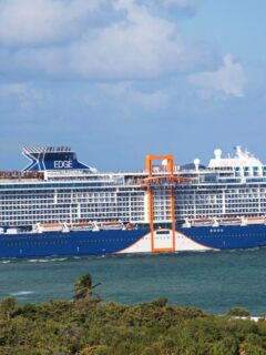 First Major Cruise Line Will Restart Sailings From The U.S. In June