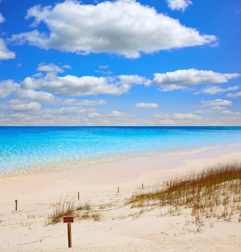 Beach, Henderson Beach Destin