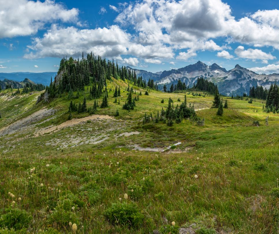 Pacific Crest Trail mountains and trees
