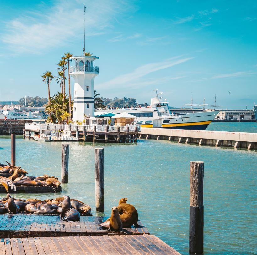 Visit Pier 39