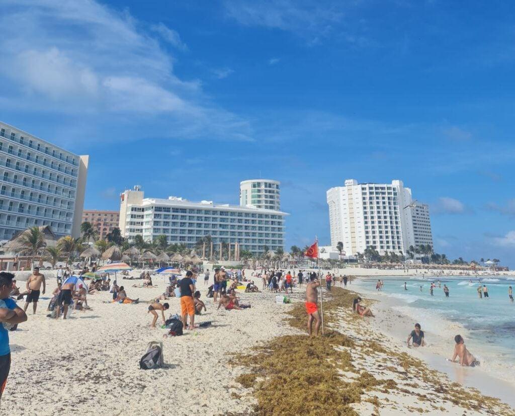 Sargassum-cancun-hotel-zone-1024x827