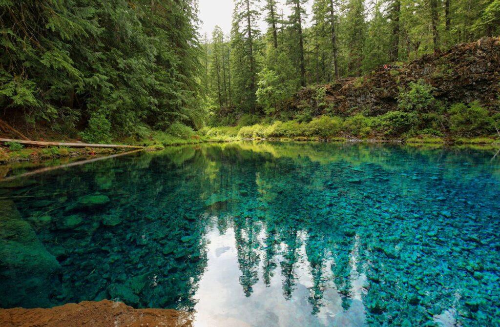 Top 10 Beginner-Friendly Hikes In Oregon