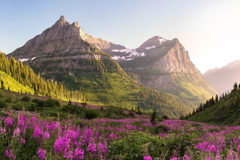5 Unique Ways To Experience National Parks