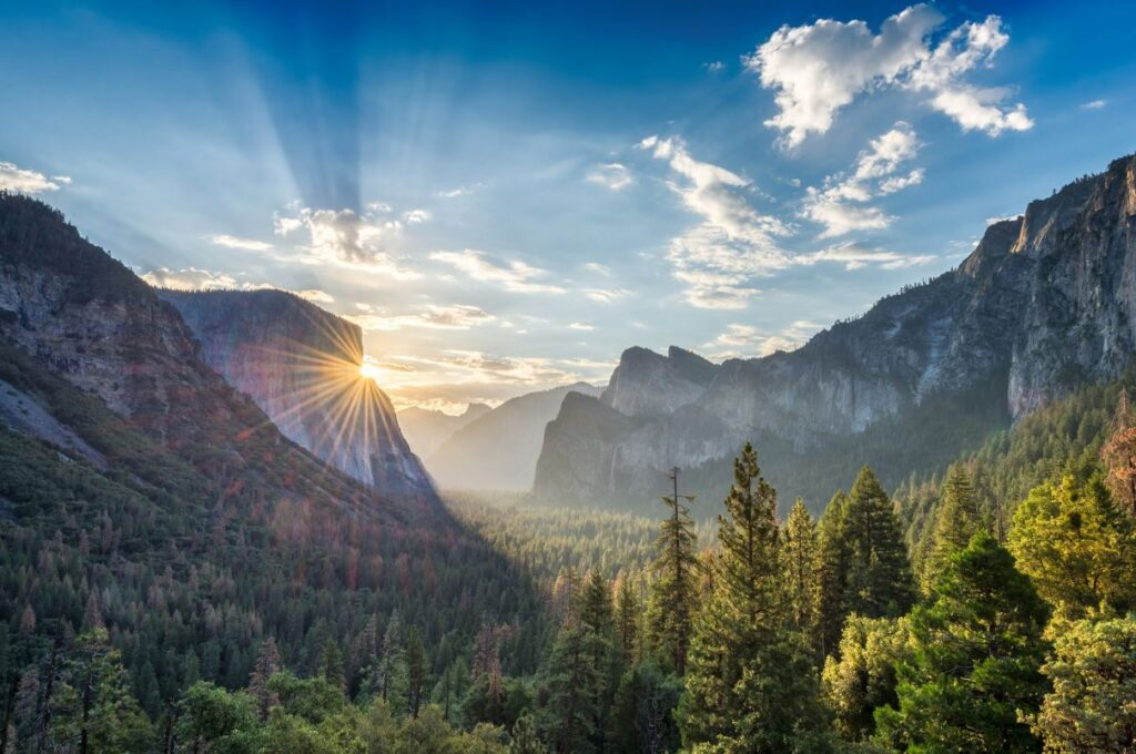 Top 7 Things To Do In Yosemite National Park