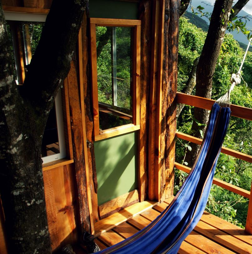 Stay At Treehouse Point
