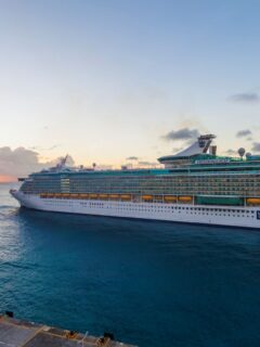 Vaccinated Passengers Will Not Be Tested On Cruises Says CDC